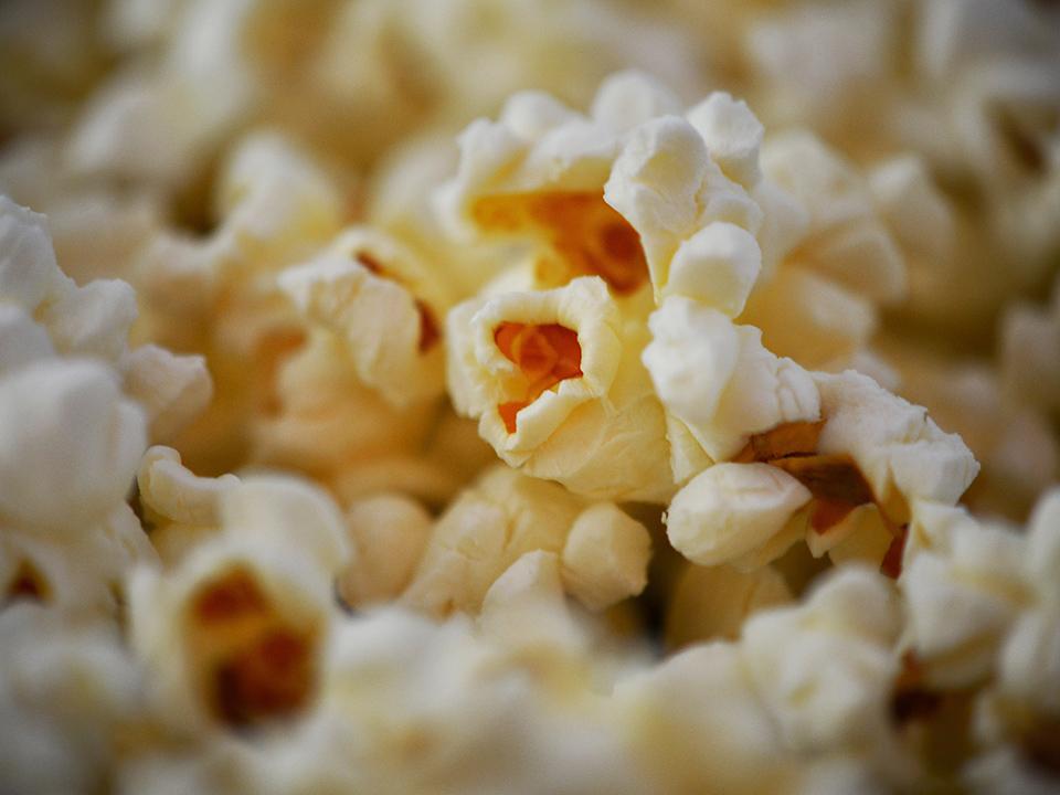 Quais alimentos mais ricos em fibras? Nutricionista responde