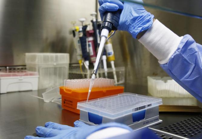 A P.1.2 foi identificada em 5,85% das 376 amostras submetidas ao procedimento de sequenciamento