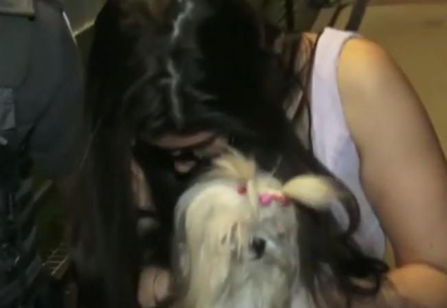 Casal que usava cachorro para esconder armas é preso em São Paulo