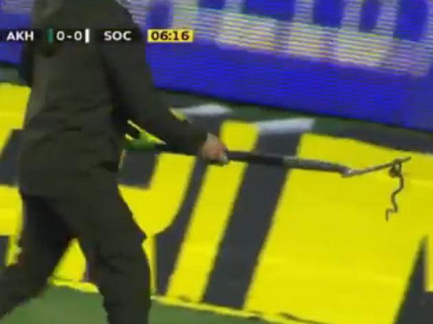Cobra invade o campo e paralisa jogo do Campeonato Russo