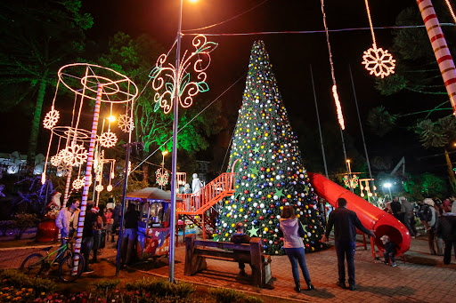 Campos do Jordão espera mais de 400 mil turistas durante período do Natal Iluminado