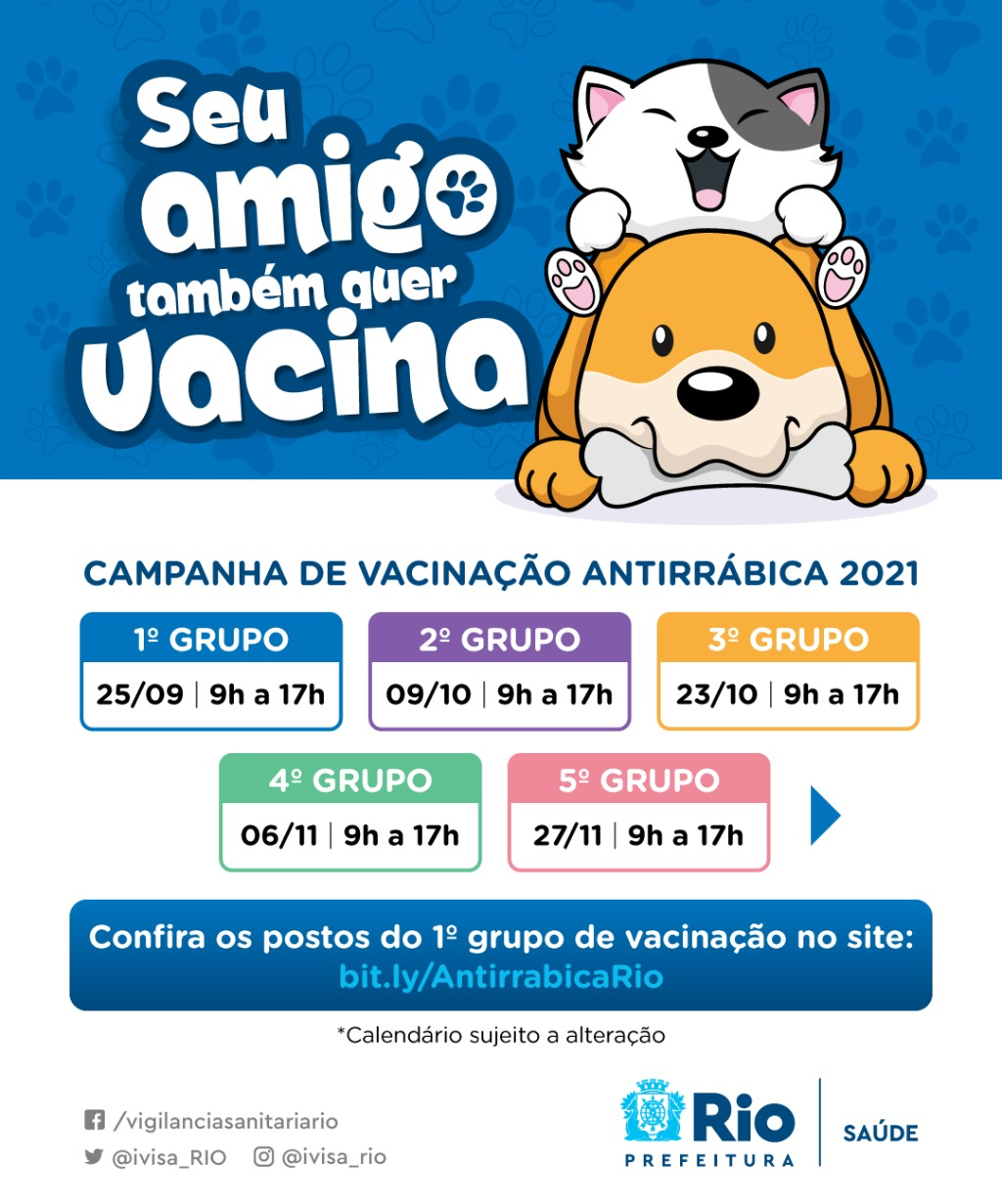 Campanha de vacinação antirrábica começa no Rio para cães e gatos