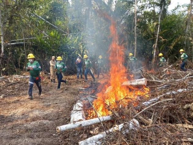 Amazonas registra recorde de queimadas em agosto