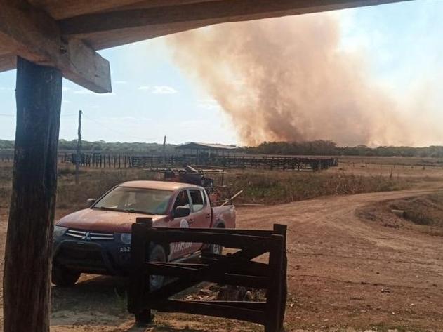 Pantanal mato-grossense perde mil hectares em queimada