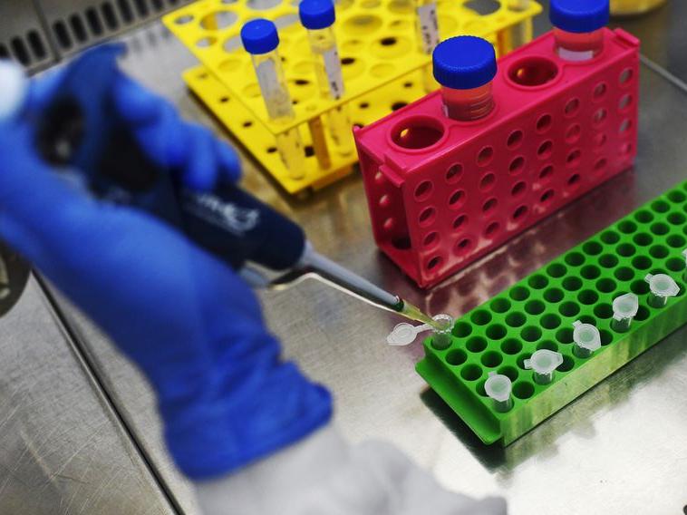 Nova variante do coronavírus é identificada no Vietnã