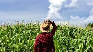 Produtores rurais do RJ tem direito a linha de crédito diferenciada