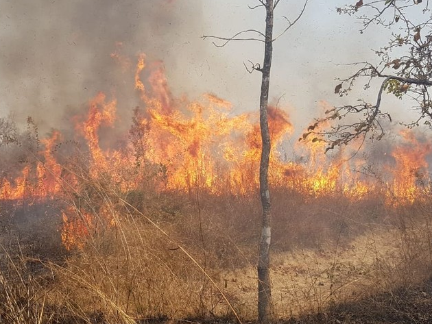 Incêndio na Chapada dos Guimarães chega ao sexto dia