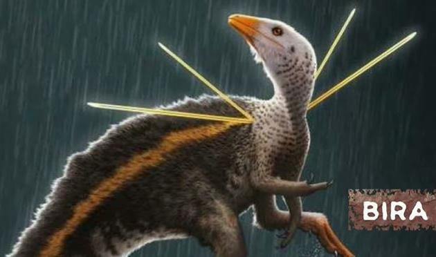 Alemanha se recusa a devolver dinossauro ao Brasil