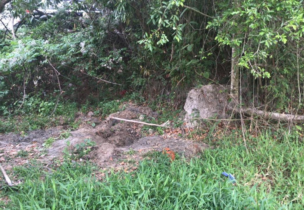 Polícia encontrou ossada em uma cava rasa no bairro Vila Paraíso, em Caçapava