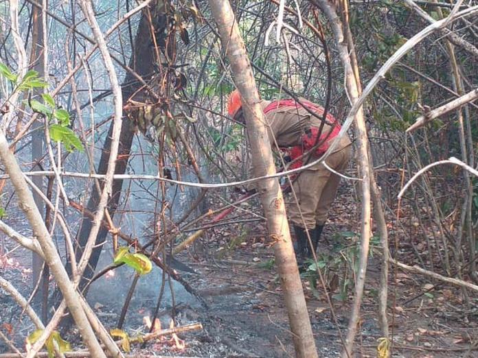 Com ajuda da chuva, incêndios em Goiás são extintos