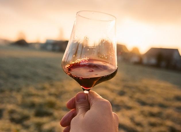 Como acertar na escolha do vinho? Aposte em um Pinot Noir da Nova Zelândia