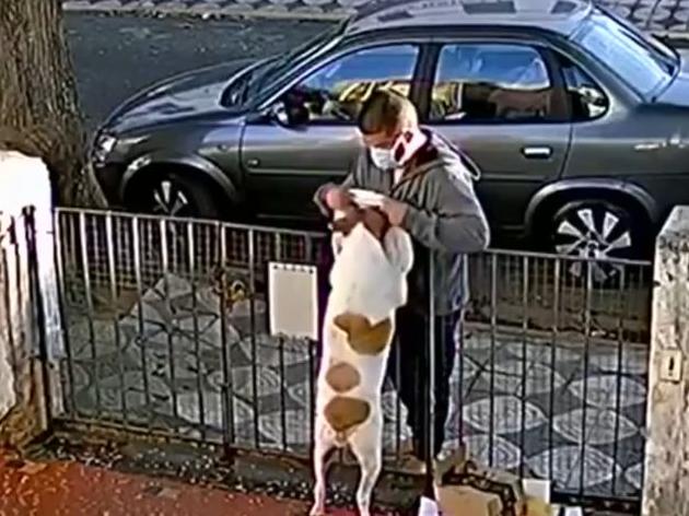 Após viralizar por ter blusa roubada, cadela ganha nova roupa em SP