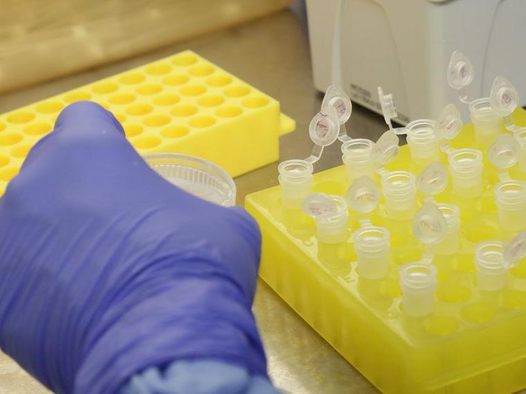 Quarta morte por variante Delta do coronavírus é confirmada no RJ