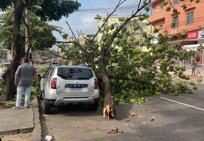Forte ventania no RJ fecha Ponte Rio-Niteroi, derruba árvores e causa estragos