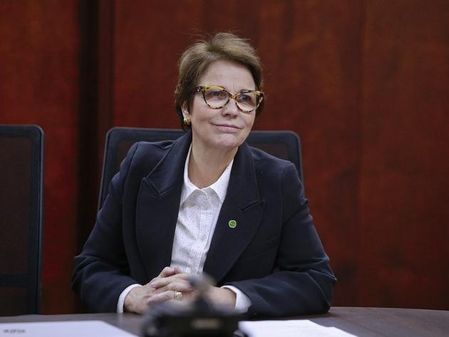Ministra Tereza Cristina deve deixar o governo para disputar vaga no Congresso