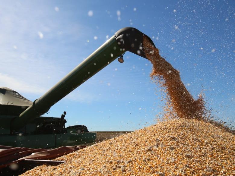 """Contra atos antidemocráticos, representante do agro diz que """"economia precisa de paz"""""""