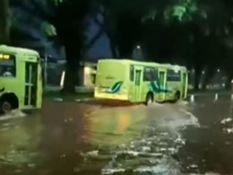 Chuva e ventania causam estragos no Paraná; veja as imagens