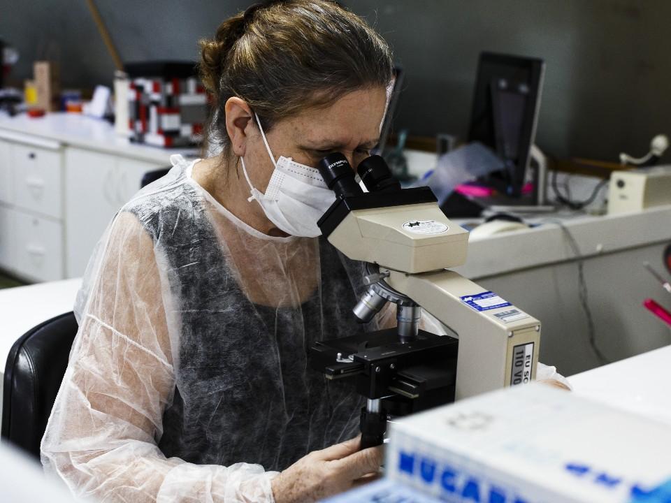 Com corte de verbas oficiais, pesquisadores lutam para fazer ciência no Brasil