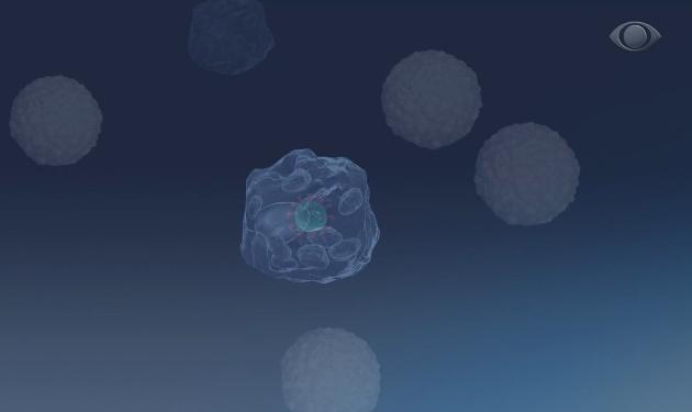 """Mais potente e """"memória de combate"""": Butantan desenvolve vacina 100% brasileira"""
