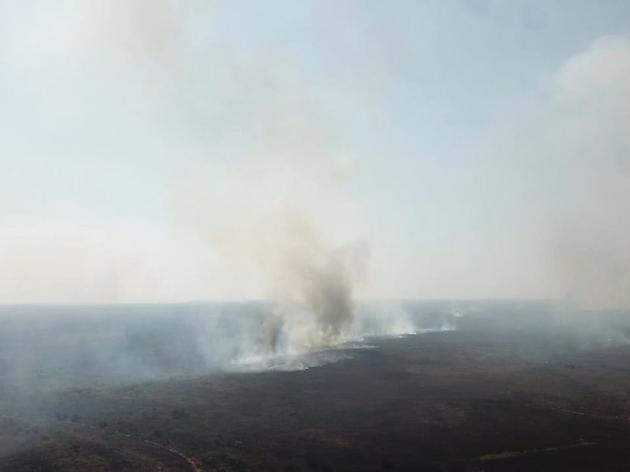 Pantanal registra perda de 74% de água nos últimos 36 anos