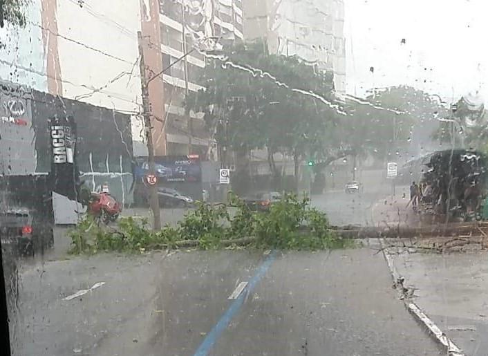 São José dos Campos registra mais do que o dobro da média histórica de chuva em fevereiro