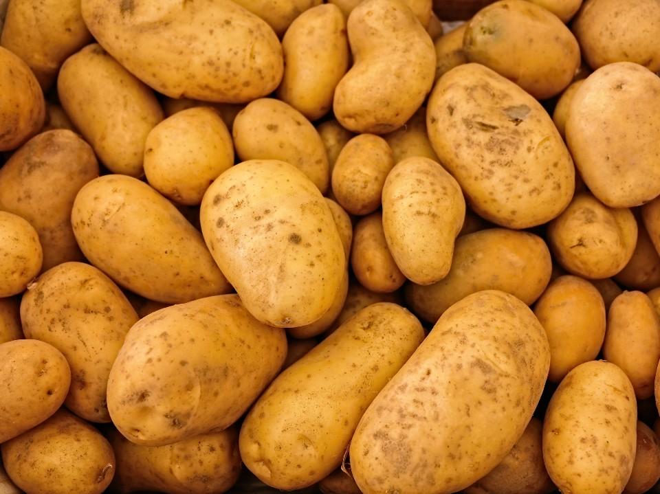 Veja os alimentos que não valem a pena comprar no mês de abril em São Paulo