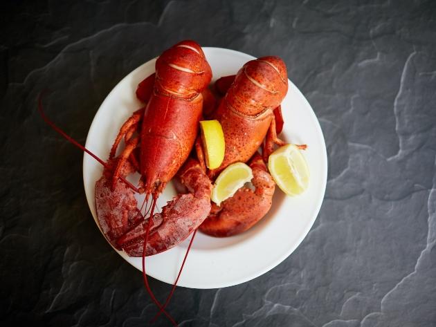 Por que lagosta tem que ser preparada viva? Entenda técnica utilizada na gastronomia
