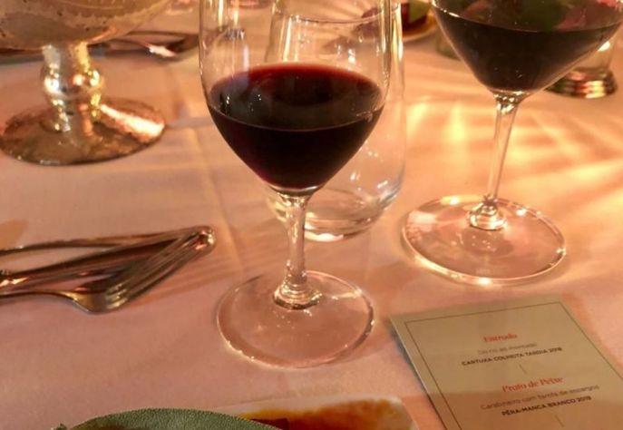 Vinhos e Vinhas: conheça os segredos do sucesso dos vinhos do Alentejo